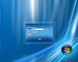 Microsoft Windows Vista Business